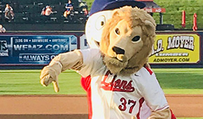 The Albright Lion throwing the first pitch