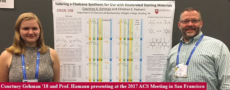 Courtney Gehman '18 presenting at the 2017 ACS Meeting