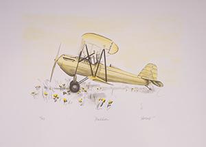 Joyce Arons Dandelion artwork