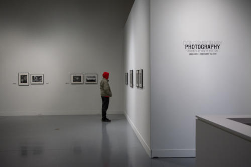 A visitor admiring the artwork in the gallery