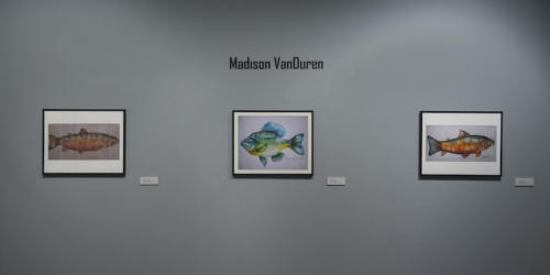 Madison VanDuren's work displayed on the wall